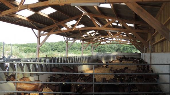 chevrerie batiment agricole bois