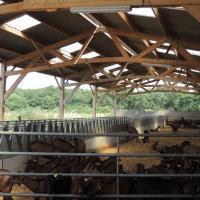 BATIMENT AGRICOLE EN KIT BOIS