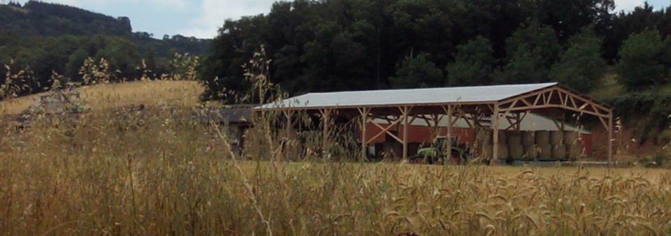 Batiment agricole et hangar en bois pas cher le for Plan de batiment agricole